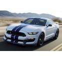 Rimappatura centralina Ford Mustang