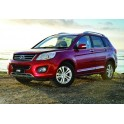 Rimappatura centralina Great Wall Motors H6